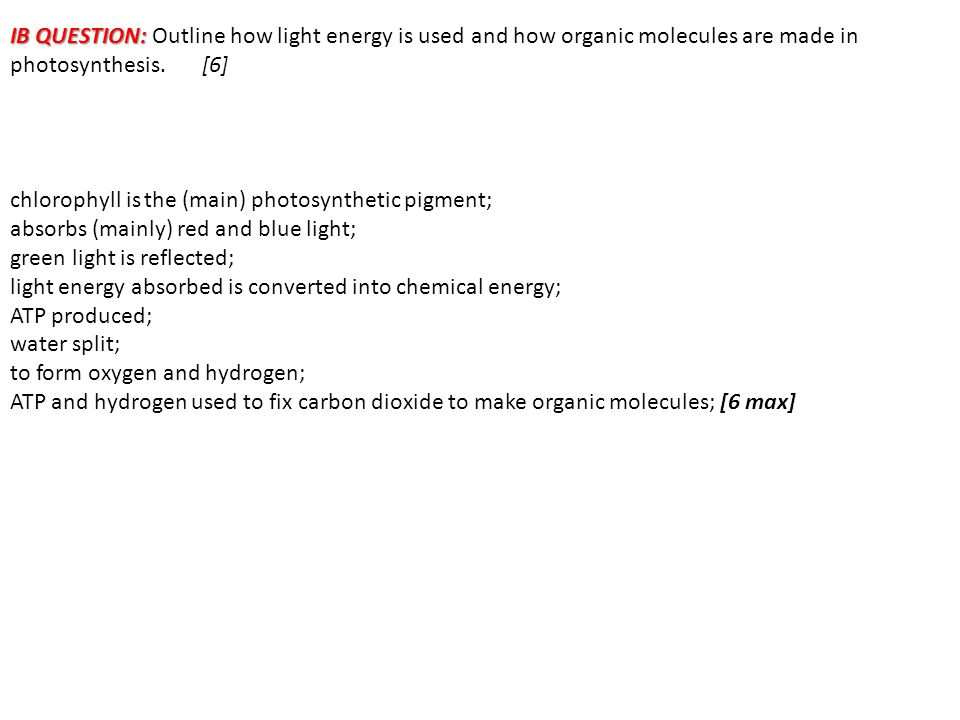 IB QUESTION: Outline how light energy is used and how organic molecules are made in photosynthesis. [6]